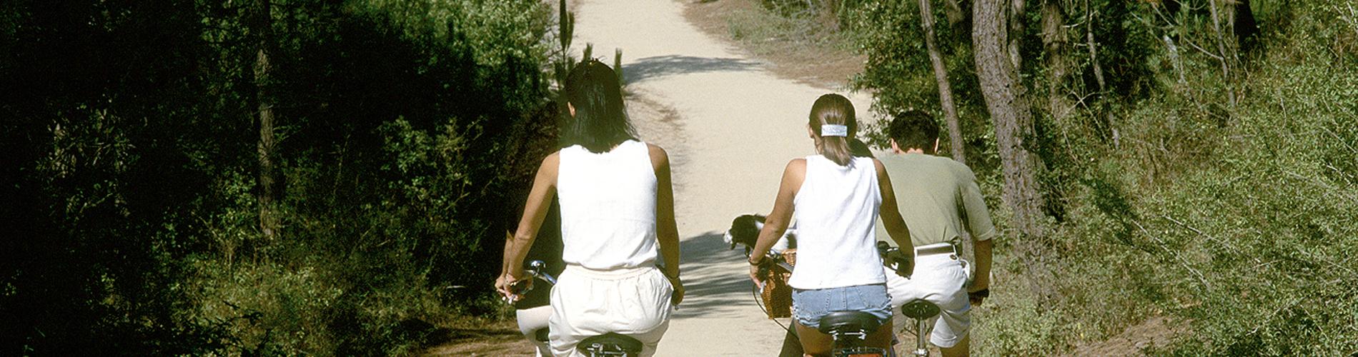 balade en vélo en Vendée