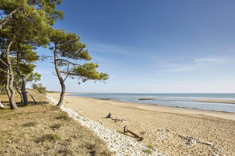 Les plages de la cote vend enne le logis du parc - Les sables d olonne office de tourisme ...